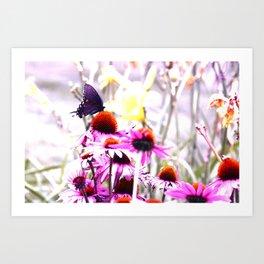Apex Butterfly Art Print