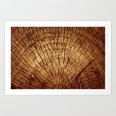 Burnt sun tree Art Print