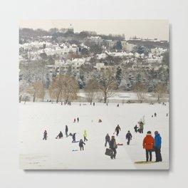 Winter in the park Metal Print