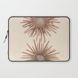 Naturalist Sea Urchins Laptop Sleeve