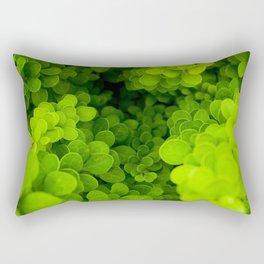 Buxus boxwood Rectangular Pillow