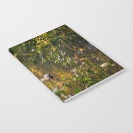 Duck pond Notebook