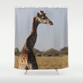 Giraffe 4 Shower Curtain