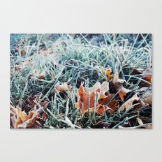 Frost Crawl Canvas Print