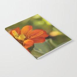 Marigold Flower Notebook