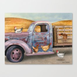 Where The Hens Gather Canvas Print