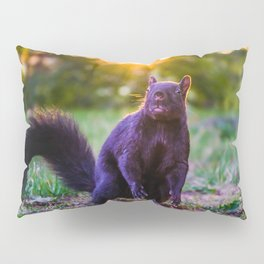 Golden Hour Eastern Gray Squirrel Photograph Pillow Sham