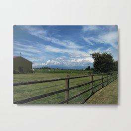 Strawberry Farm 1 Metal Print