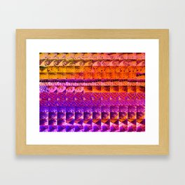 cactus gradient 506 Framed Art Print