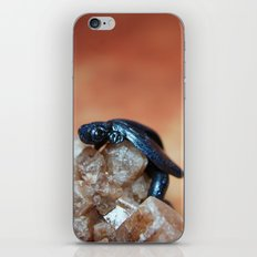 Metallic Blue and Black Dragon on Quartz Crystal iPhone & iPod Skin