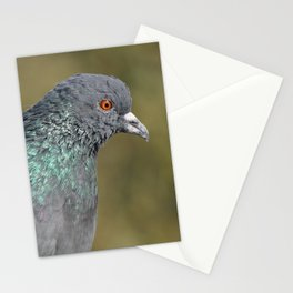 The great Indian pigeon Stationery Cards