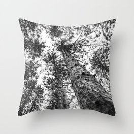 Way Up High | Tall Trees | Landscape Photography | Nature | Forest Throw Pillow