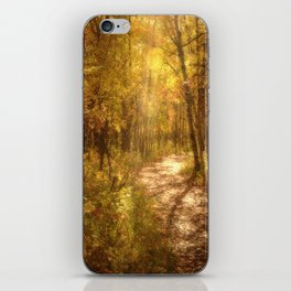 The Colors of Fall iPhone Skin