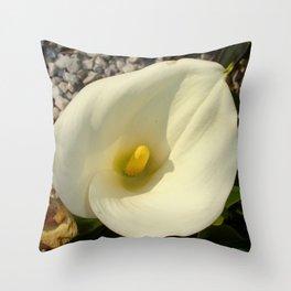 Single Cream White Calla Lily With Garden Background Throw Pillow