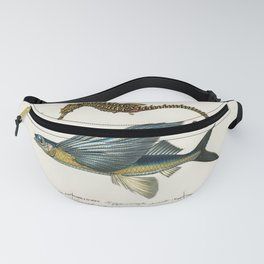 Lined seahorse (Hippocampus Erectus) and Stropical two wing flying fish (Exocoetus Volitan) illustra Fanny Pack