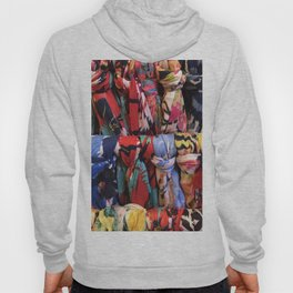 Colorful Scarves Pattern Hoody