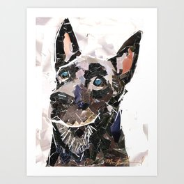 Kay The German Shepherd Art Print