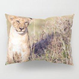 Young lion Pillow Sham