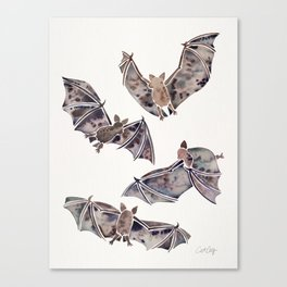 Bat Collection Canvas Print
