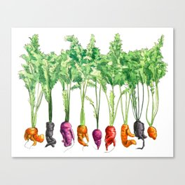 Funky Vegetables Canvas Print