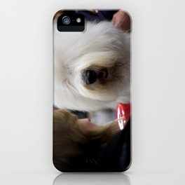 Westminster Kennel Club Dog Show iPhone Case
