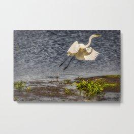 Flying bird Metal Print