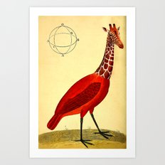 Bird Giraffe Art Print