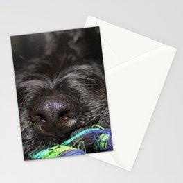 gino Stationery Cards