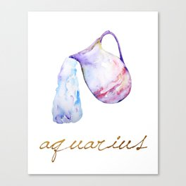 Watercolor Aquarius Water Bearer Canvas Print