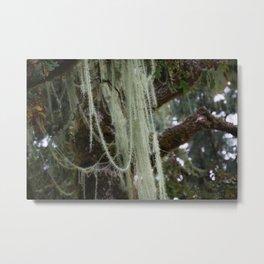 Tree Jewelry Metal Print