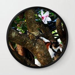 Hibiscus flower cat Wall Clock