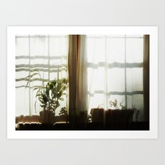 Morning light diffused  Art Print