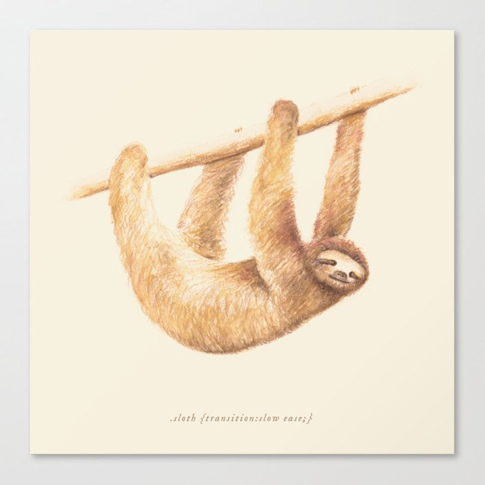 Css Animal: Sloth Canvas Print