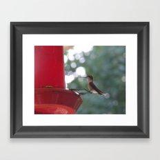 Hummingbird w/ bokeh Framed Art Print