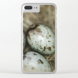 Robins eggs Clear iPhone Case