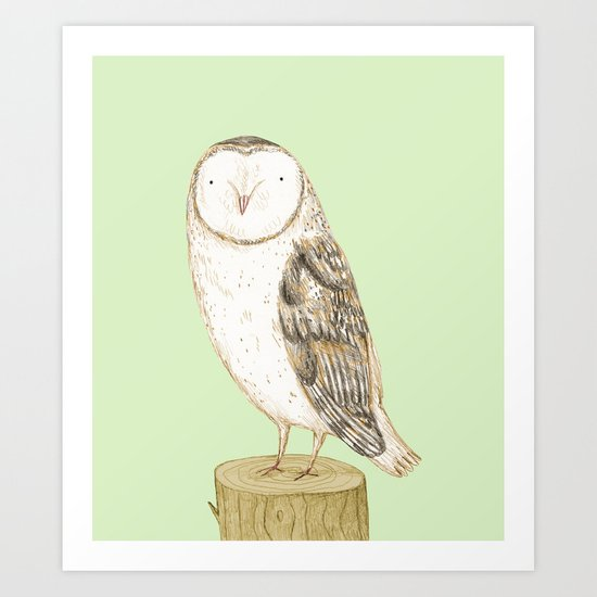 Barn Owl by sophiecorrigan