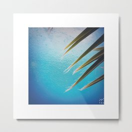palm leaves and rain Metal Print