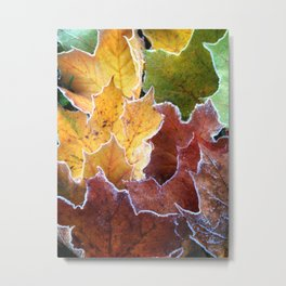 Frosted edges Metal Print