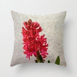 Red hyacinth Throw Pillow