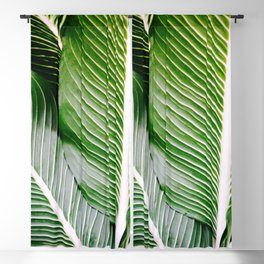 Big Leaves - Tropical Nature Photography Blackout Curtain