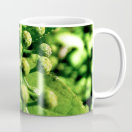 Chokecherry Flower Buds Coffee Mug