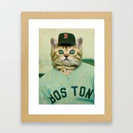 Baseball Kitten #3 Framed Art Print