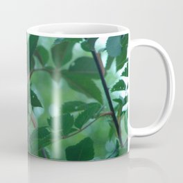 a rose Coffee Mug