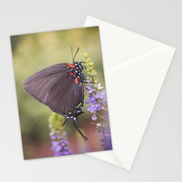 Stopping for a rest Stationery Cards