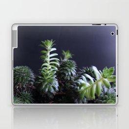 Succulents in Cool Light Laptop & iPad Skin