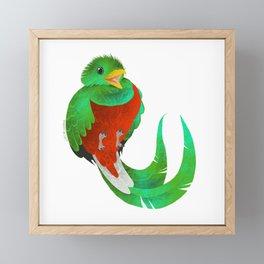 Resplendent Quetzal Framed Mini Art Print