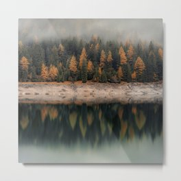 Winter forest trees #4 Metal Print