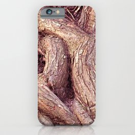 Ancient Gnarled Ficus Tree Trunk and Aerial Roots Texture iPhone Case