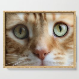 Ginger Mint Kitteh Serving Tray