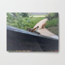 Grasshopper on a Rail Metal Print